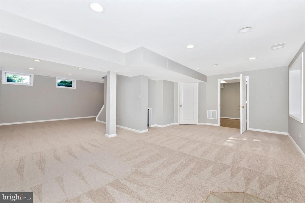 Fully finished basement with full bath - 4800 MARIANNE DR, MOUNT AIRY