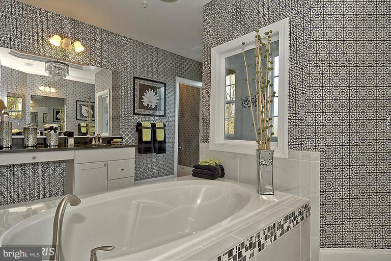 LARGE MASTER BATH WITH LUXURY FEATURES - 14270 BURNTWOODS RD, GLENWOOD
