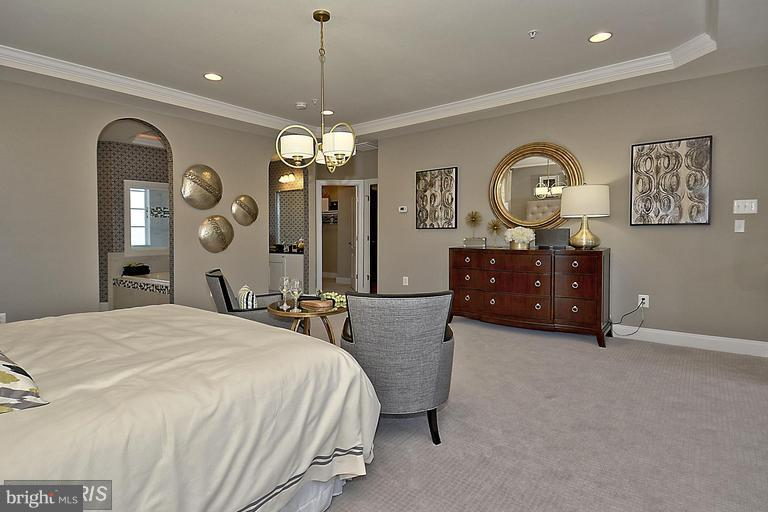 MASTER BEDROOM WITH DRESSING AND CONVERSATION AREA - 14270 BURNTWOODS RD, GLENWOOD