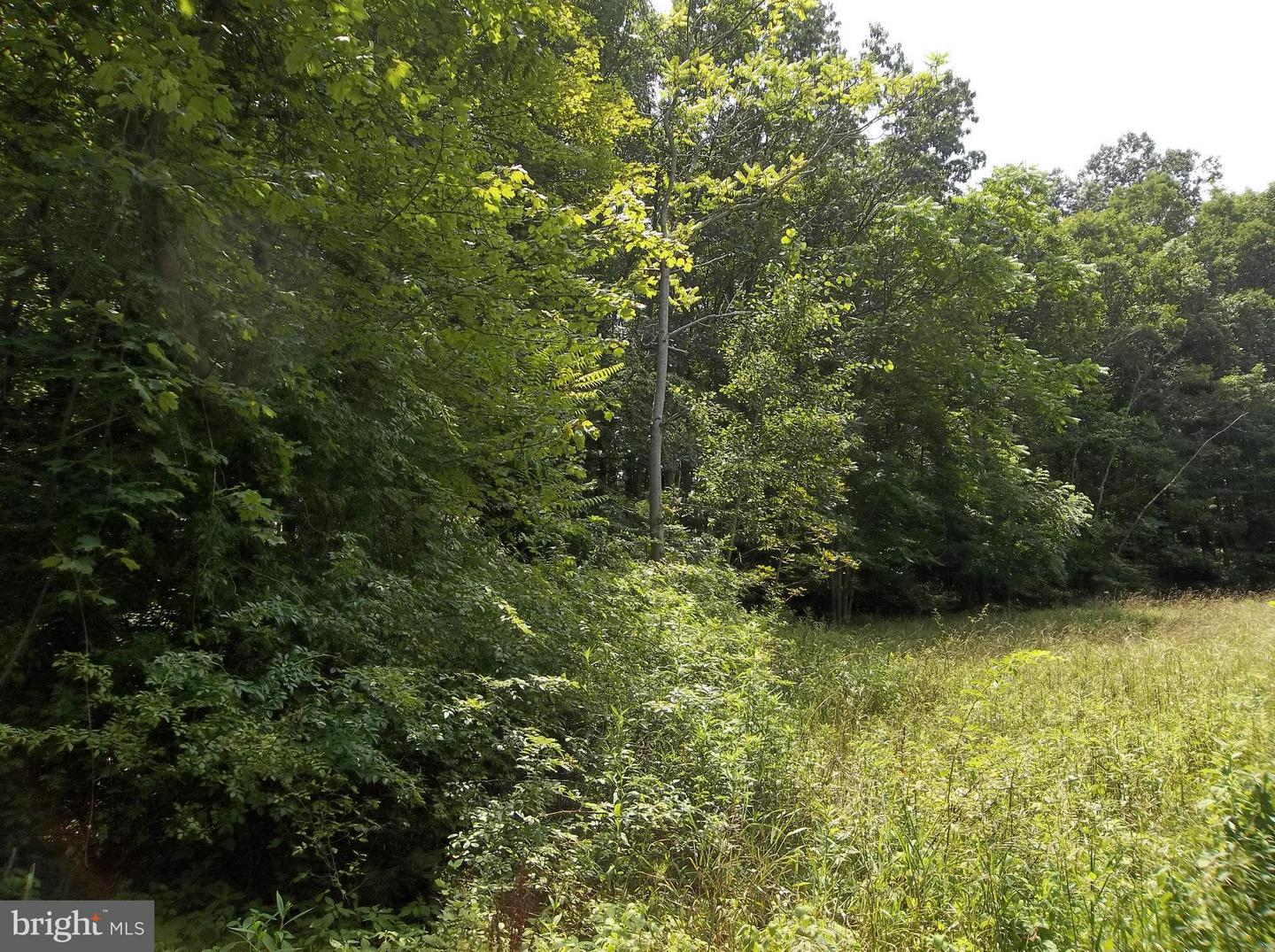 Additional photo for property listing at 139 Ruby Rd  Oldtown, Maryland 21555 United States