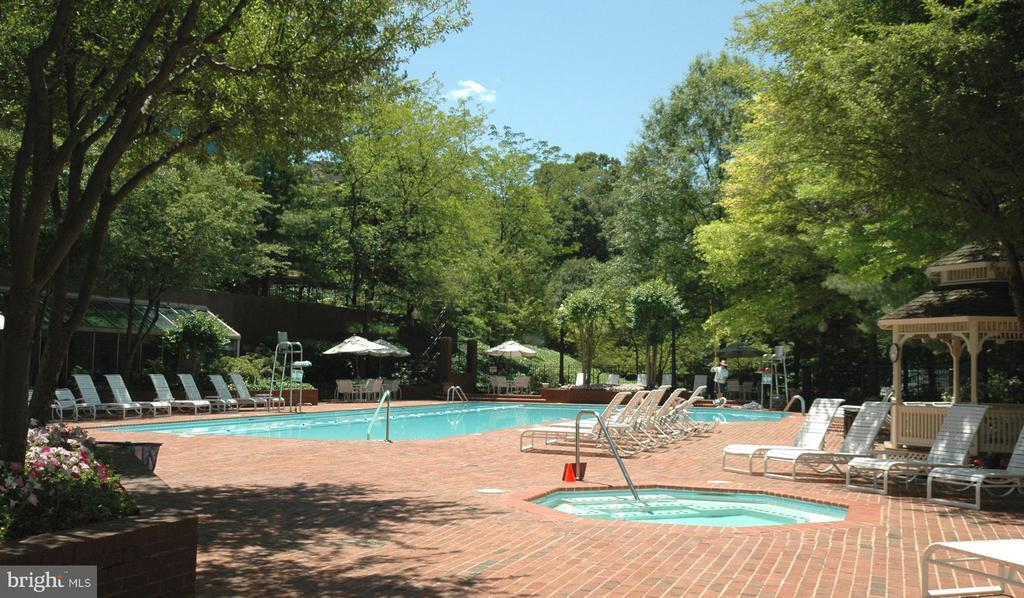 OUTDOOR POOL - 5610 WISCONSIN AVE #406, CHEVY CHASE