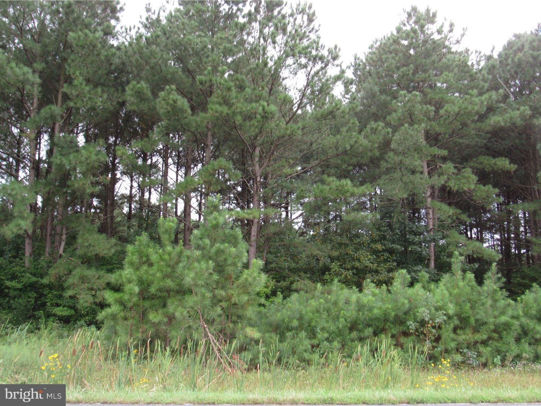 獨棟家庭住宅 為 出售 在 19420 N MILTON ELLENDALE HWY Ellendale, 特拉華州 19968 美國