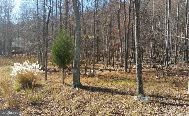 Land for Sale at 69 Parkside Terrace Berkeley Springs, West Virginia 25411 United States