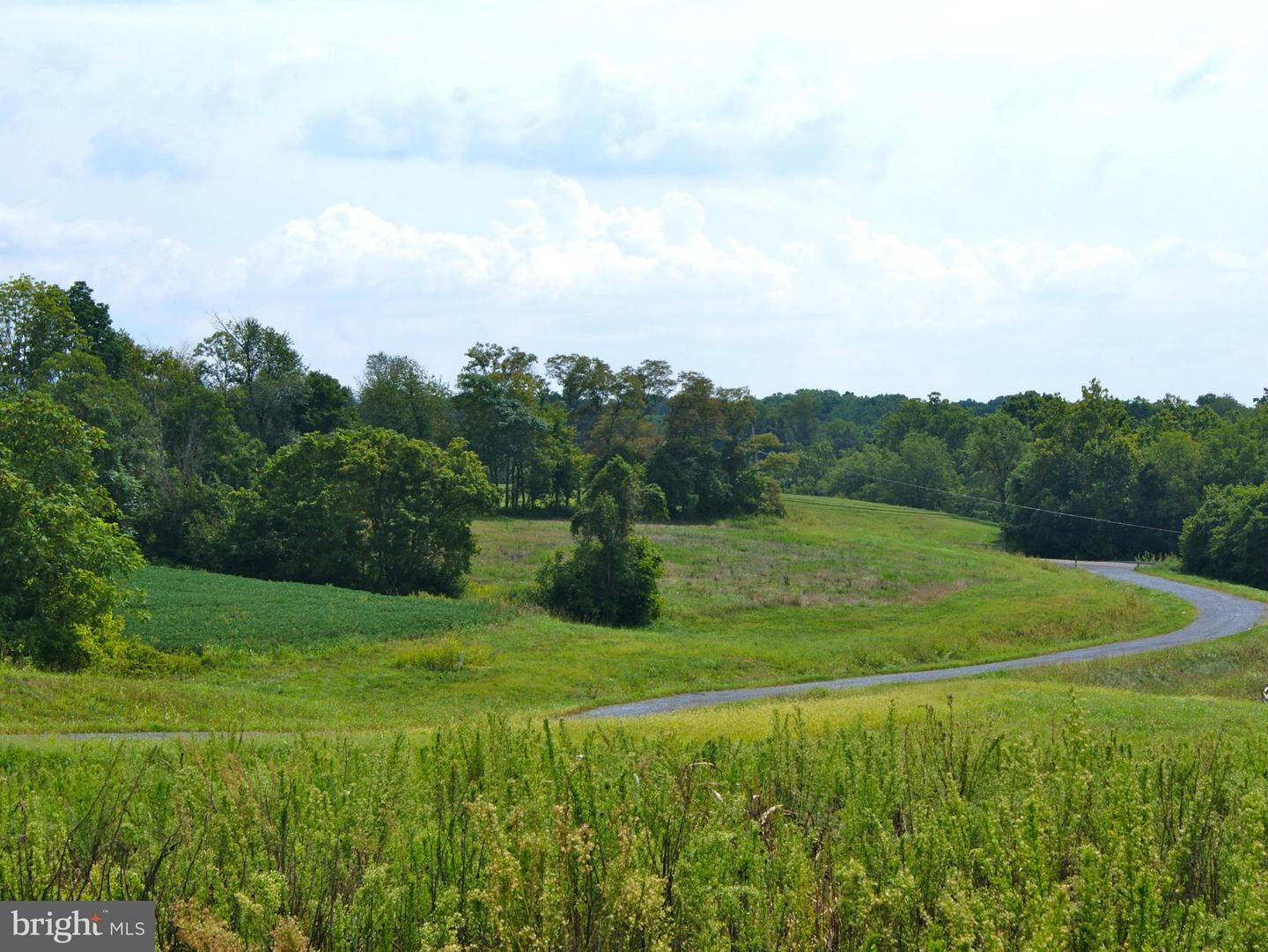 Additional photo for property listing at 3726 Petersville Rd Knoxville, Maryland 21758 United States