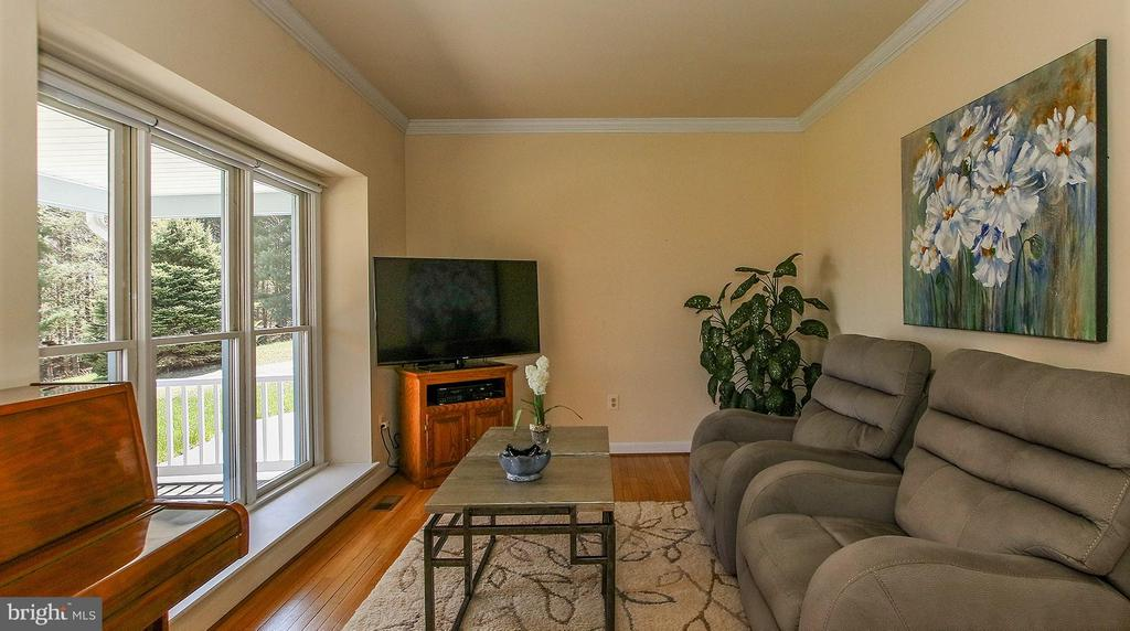 Main level office or relaxing room w/mountain view - 42064 BLACK WALNUT LN, LEESBURG