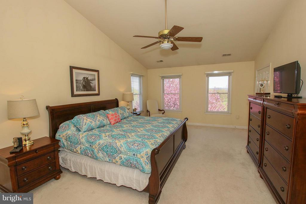 With views of flowering trees and mountains - 42064 BLACK WALNUT LN, LEESBURG