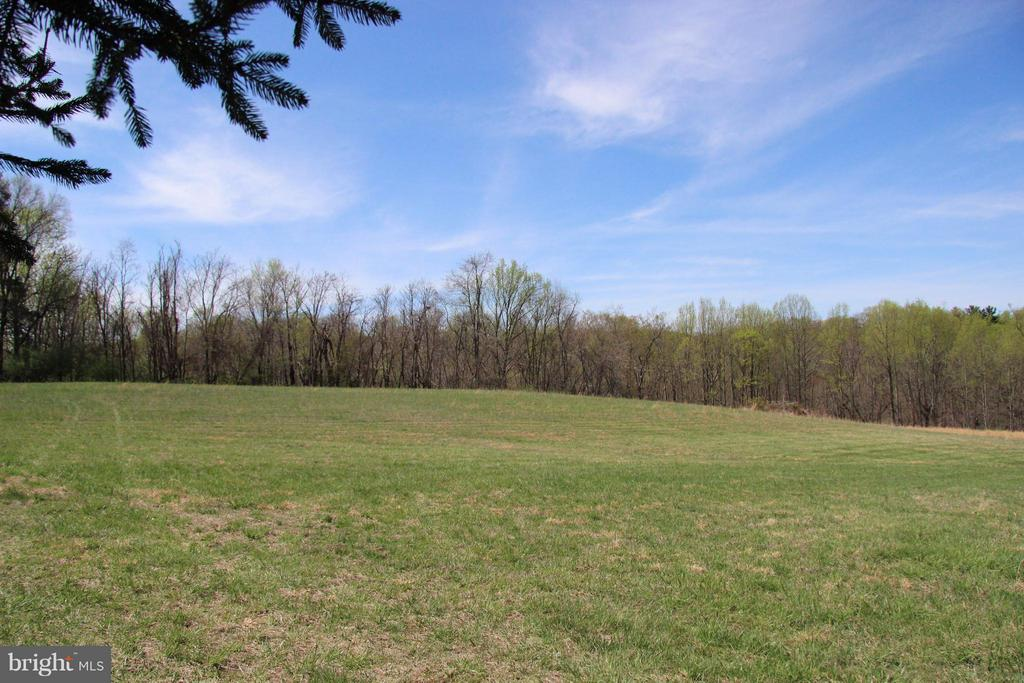 Perfect for horses! View of acreage behind home - 42064 BLACK WALNUT LN, LEESBURG