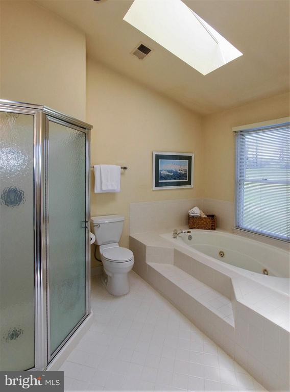 Jetted tub and vaulted ceilings with skylight - 42064 BLACK WALNUT LN, LEESBURG
