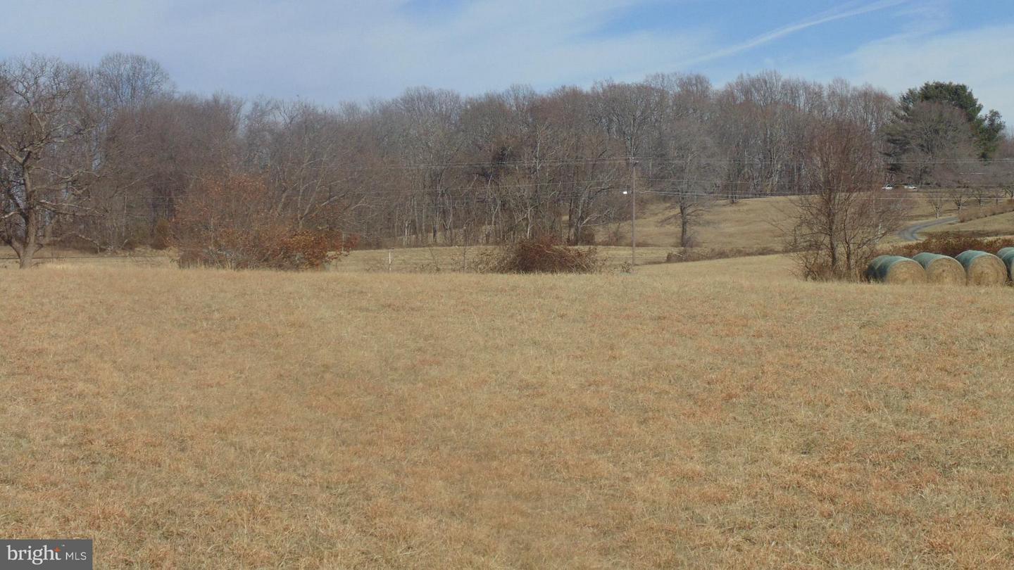 Land for Sale at 14732 Lee Hwy Amissville, Virginia 20106 United States