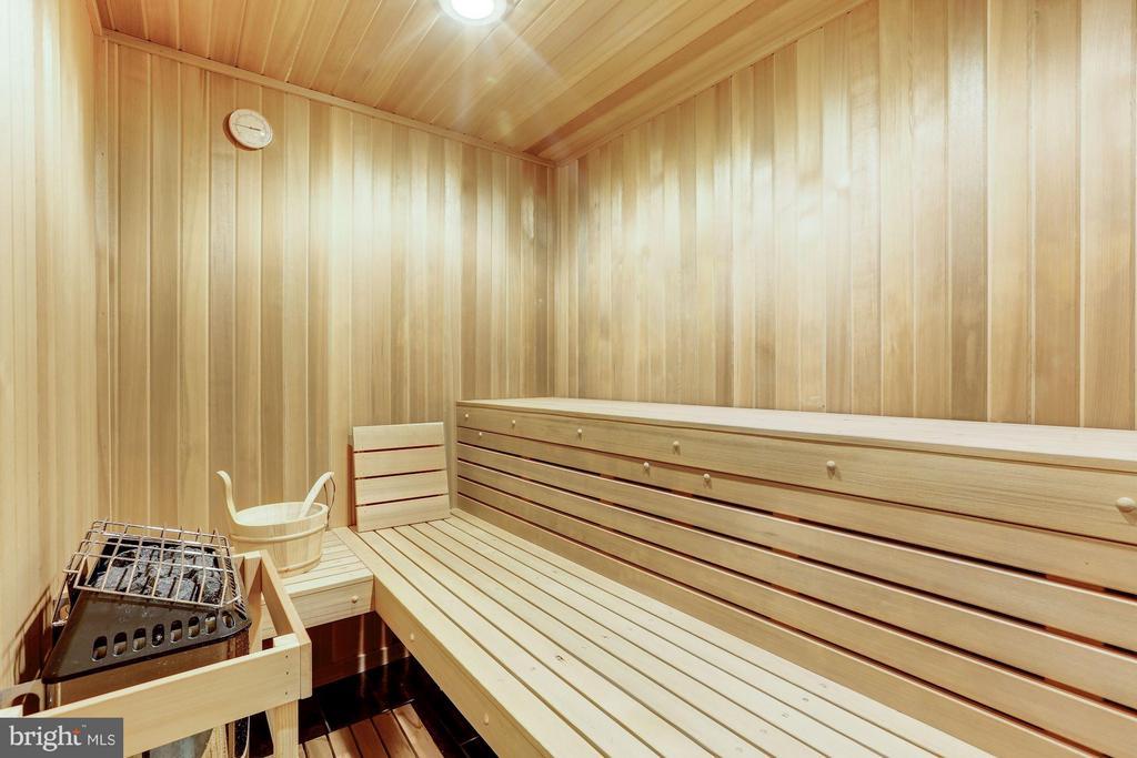 Sauna - 1635 ADMIRALS HILL CT, VIENNA