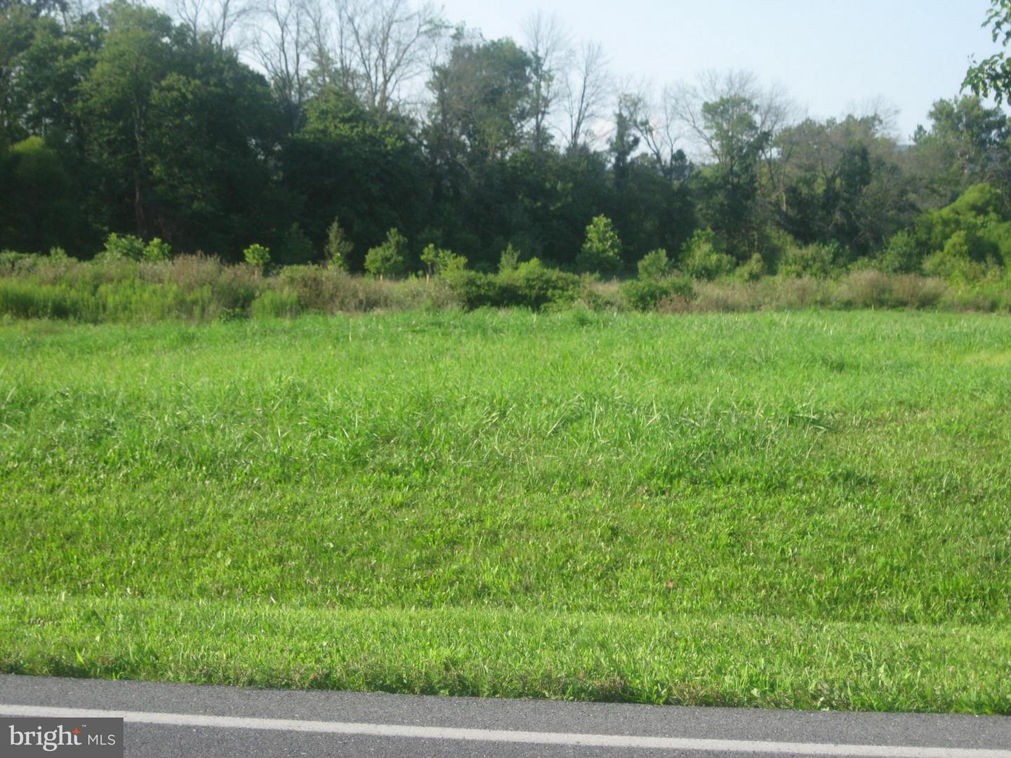Land for Sale at Lot 3c North Welty Waynesboro, Pennsylvania 17268 United States