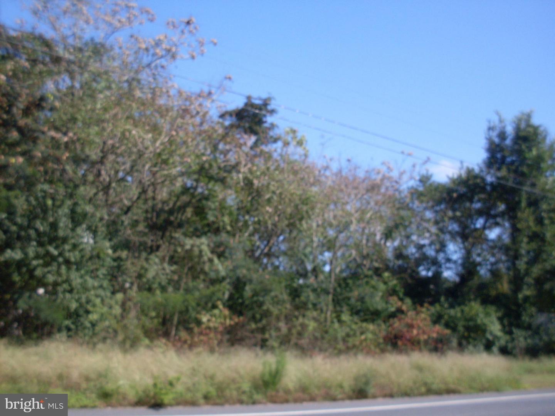 Land for Sale at 12195 Laurel Rd Mardela Springs, Maryland 21837 United States