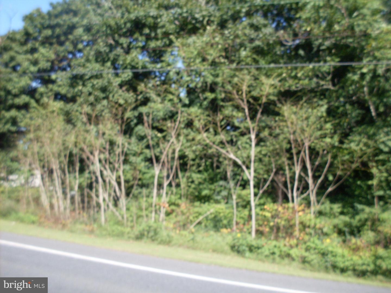 Land for Sale at 12225 Laurel Rd Mardela Springs, Maryland 21837 United States