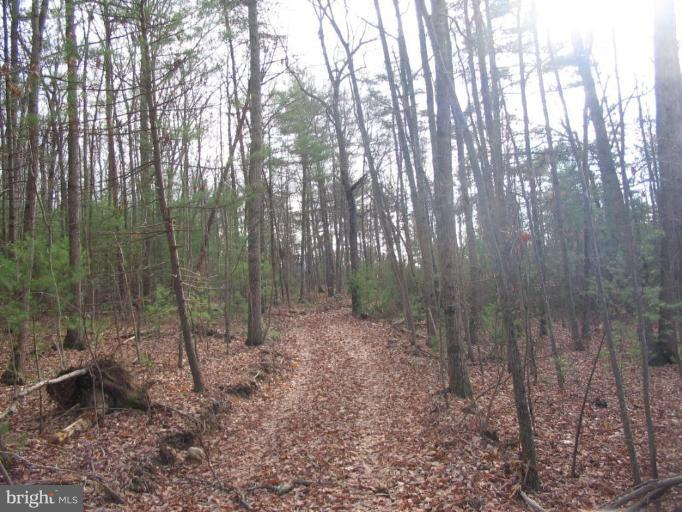 Additional photo for property listing at 0 Dry Run Rd.  Luray, Virginia 22835 United States