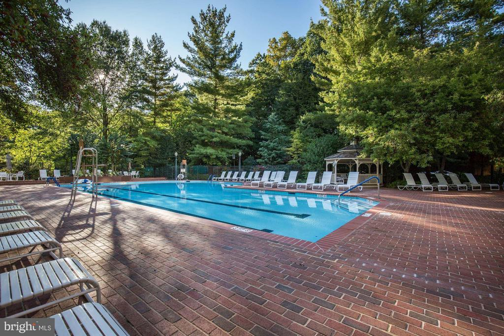 Community outdoor pool - 5610 WISCONSIN AVE #1606, CHEVY CHASE