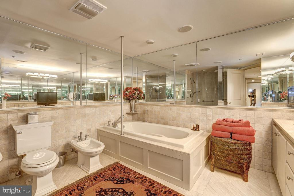 Master bath with soaking tub and sep shower - 5610 WISCONSIN AVE #1606, CHEVY CHASE