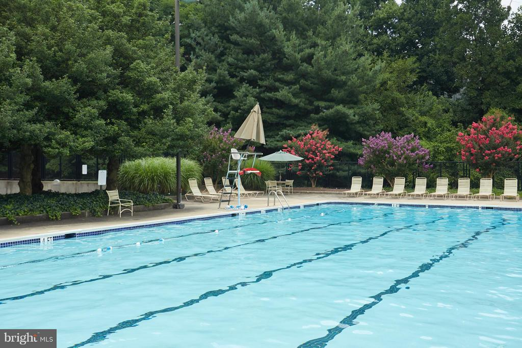 Lap Pool - 1800 OLD MEADOW RD #915, MCLEAN