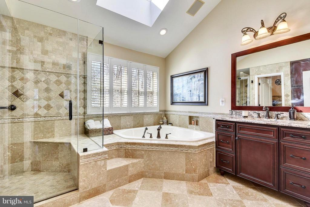 True Luxury Bathroom - 21303 WINDRUSH CT, STERLING