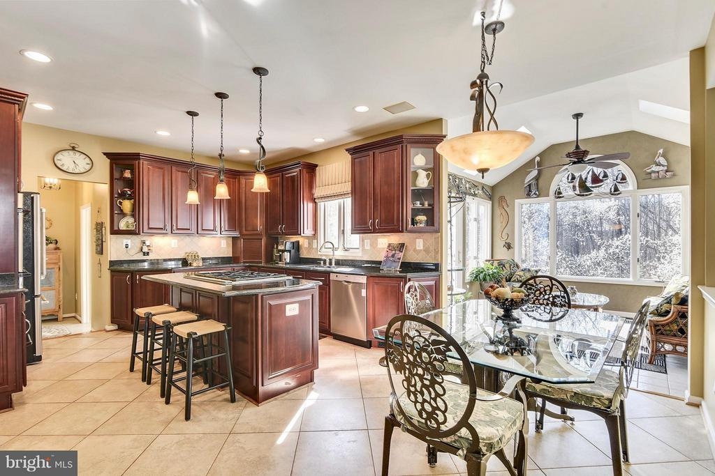 Chef's Kitchen with Granite Counters - 21303 WINDRUSH CT, STERLING