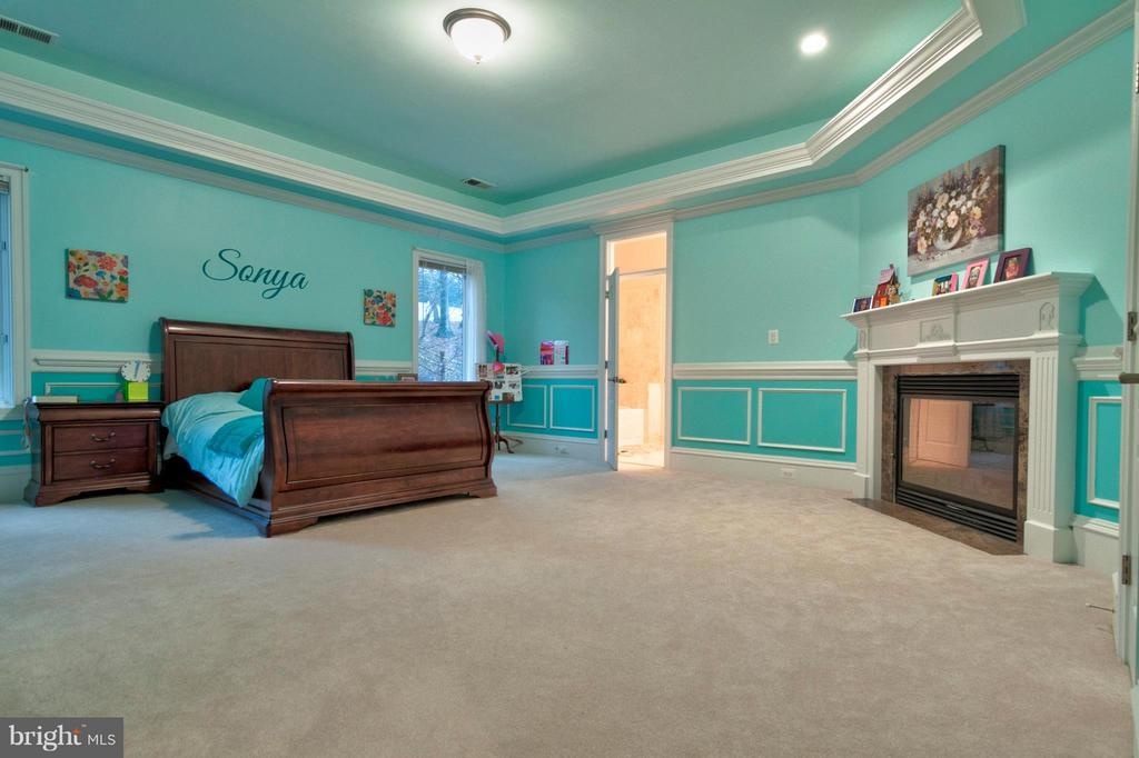 Junior Master  bedroom with fireplace and jaccuzzi - 1347 KIRBY RD, MCLEAN