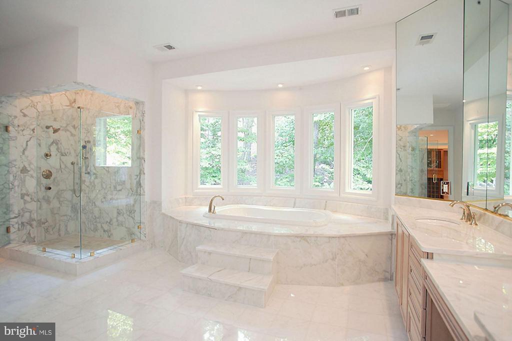 Bath (Master) - 1347 KIRBY RD, MCLEAN