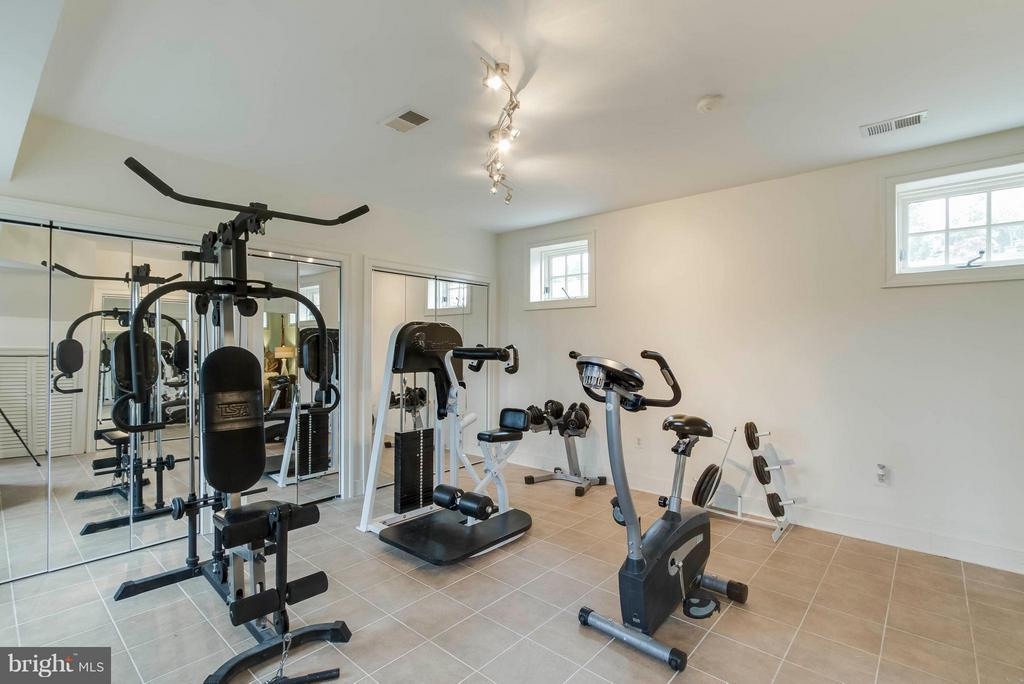 Basement gym & utility room - 15826 OLD WATERFORD RD, PAEONIAN SPRINGS