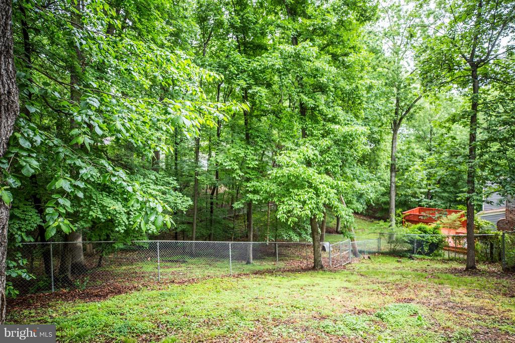 Huge back yard w/3 separate fenced areas. - 113 COLUMBUS CV, STAFFORD