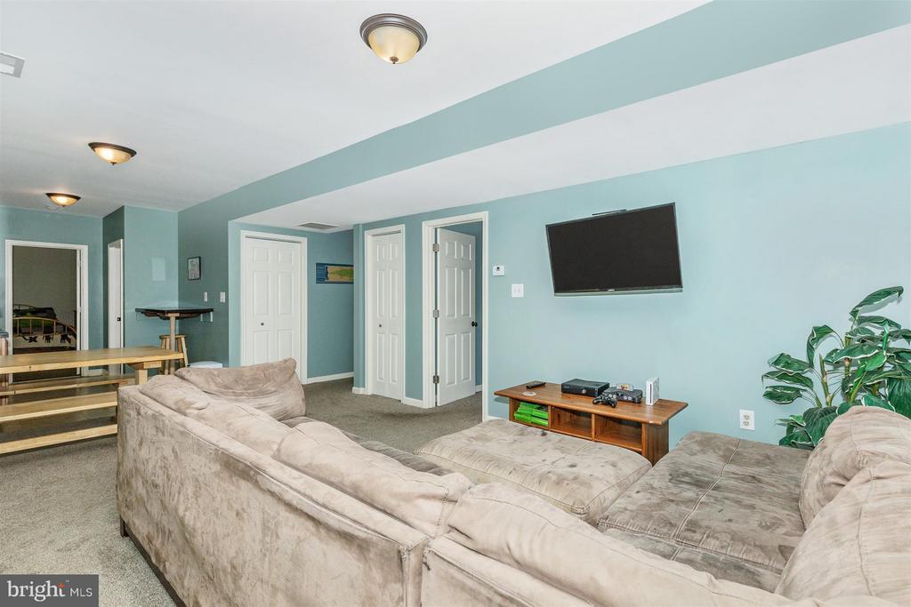 Rec Room - 4158 SOUTHBEND LN, SHARPSBURG