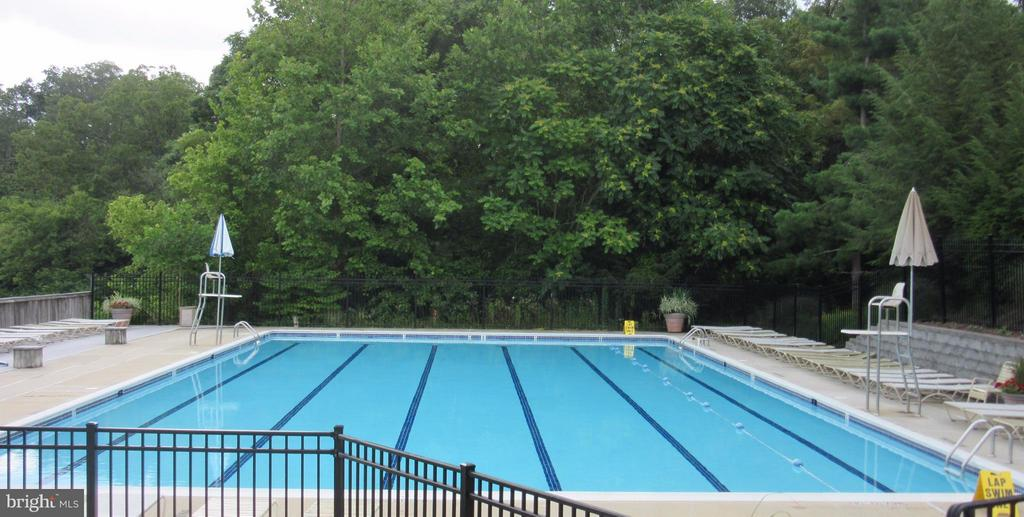 West Winds Pool - 6603 ACCIPITER DR, NEW MARKET