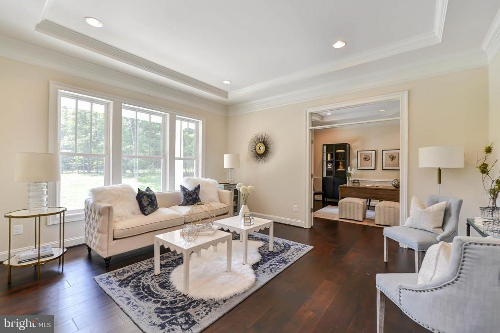 Living Room - 5680 WILLOW BROOK LN, FAIRFAX