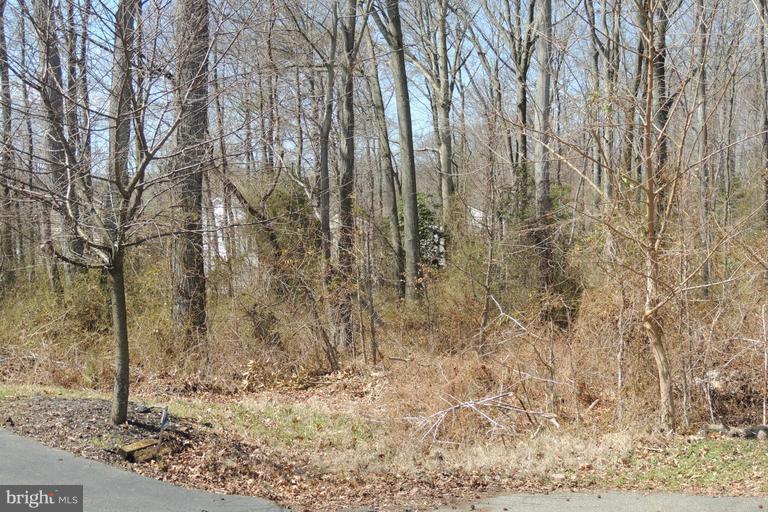 土地 のために 売買 アット Edgewater, メリーランド 21037 アメリカ