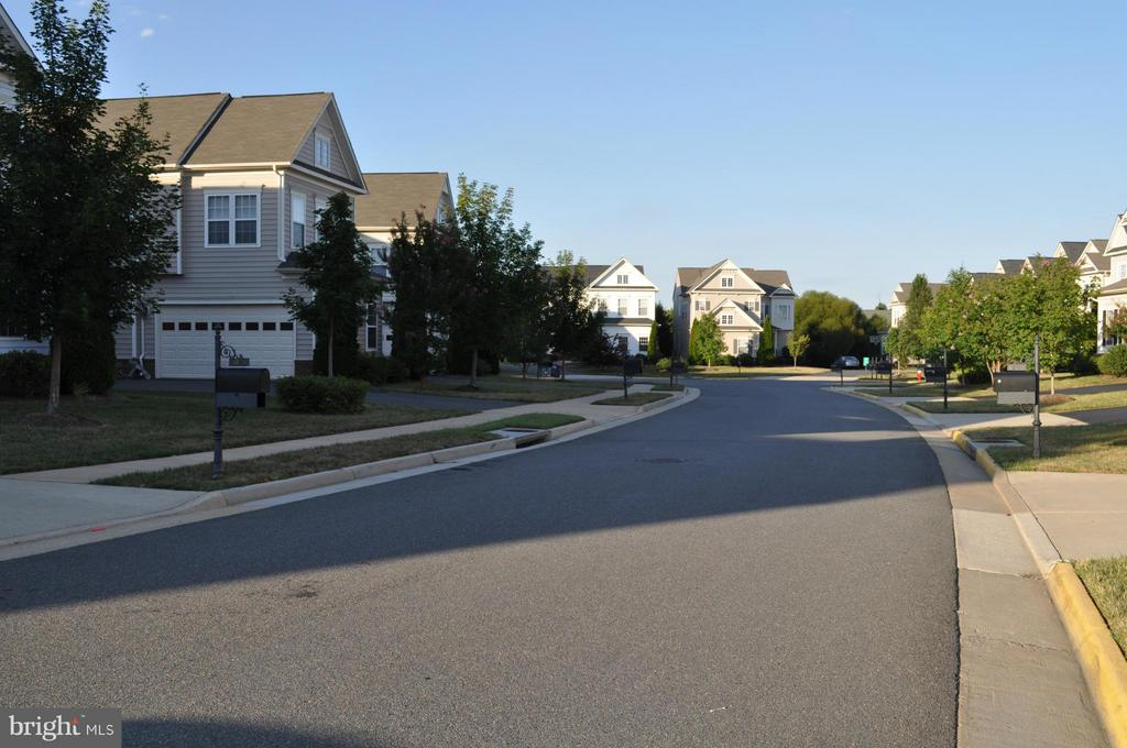 Park Brooke street that ends in a cul-de-sac - 42918 PARK BROOKE CT, BROADLANDS