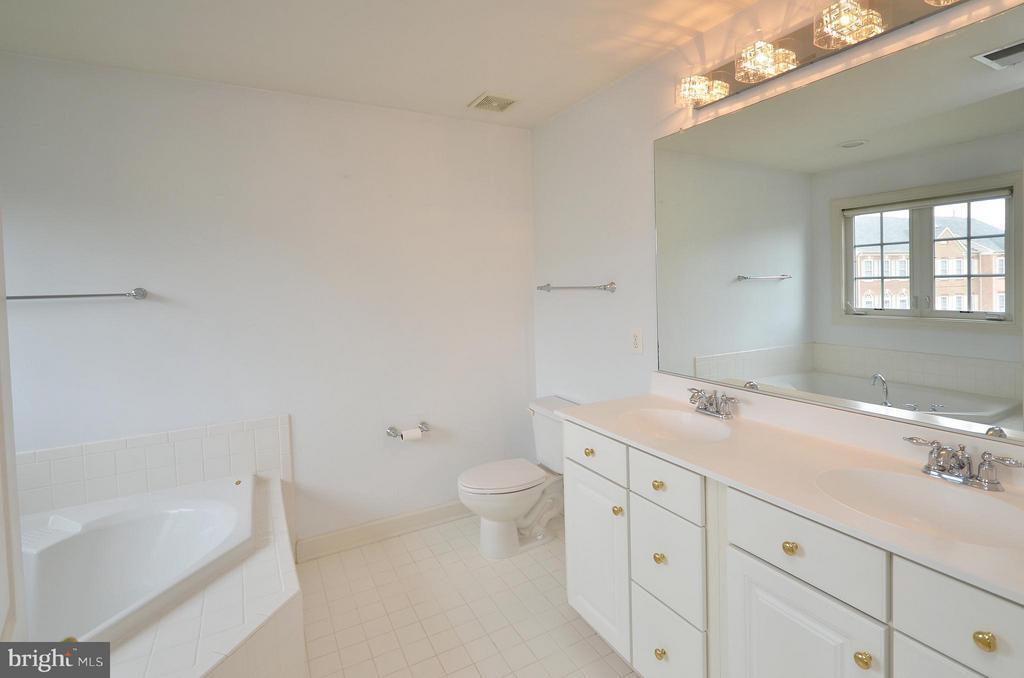 Master Bathroom - 41833 PROVERBIAL TER, ALDIE