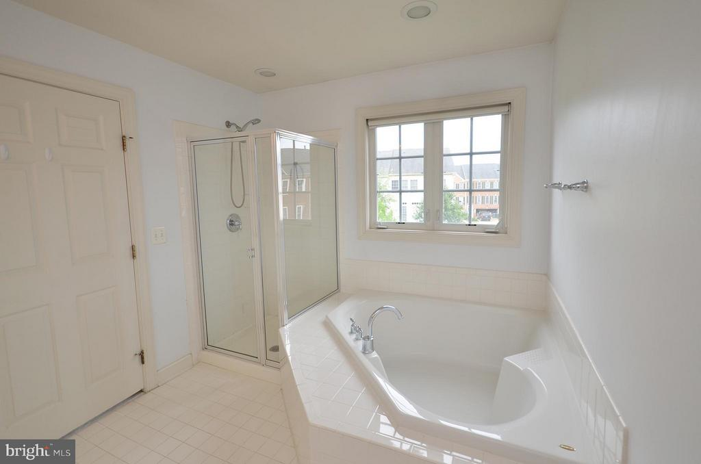 Master Bathroom with Separate Shower and Tub - 41833 PROVERBIAL TER, ALDIE