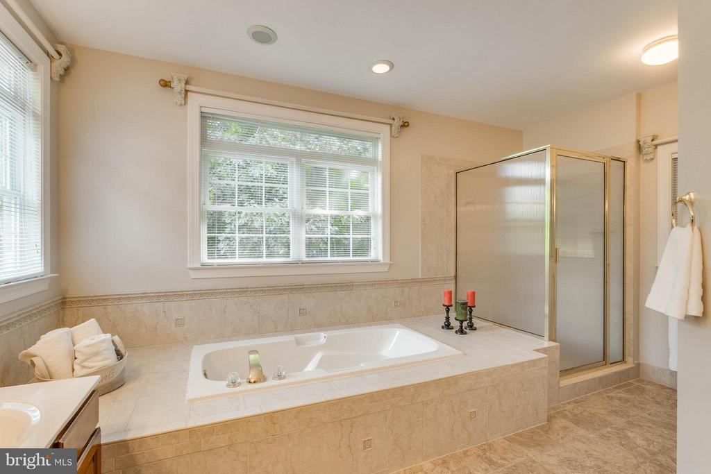 Bath (Master) sunk in tub & separate shower. - 1 BRIDGECREEK CT, STAFFORD