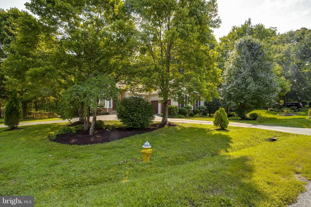 Exterior  Beautifully landscaped! Fire hydrant! - 1 BRIDGECREEK CT, STAFFORD