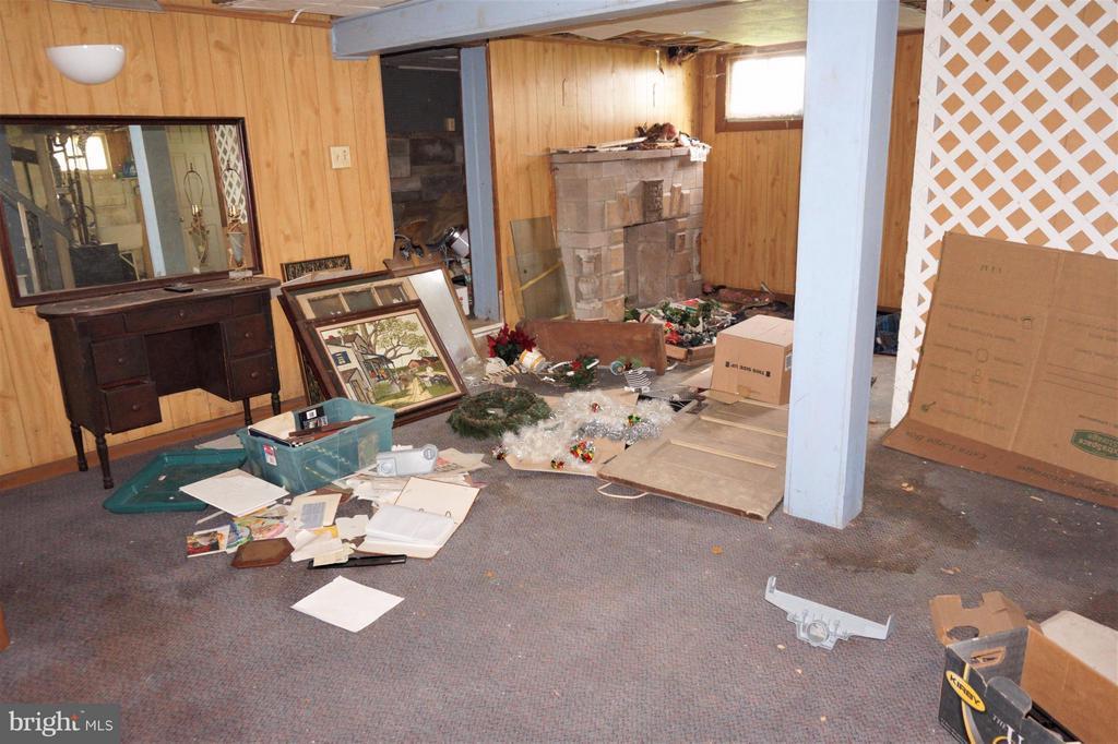 Basement Area 2/Family Room - 802 RITTENHOUSE ST NW, WASHINGTON