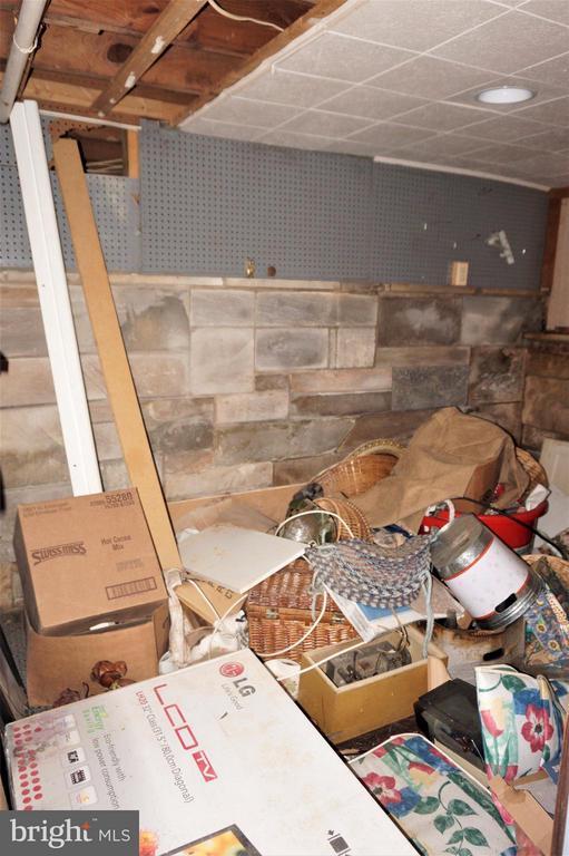 Basement Area 3/Storage Room - 802 RITTENHOUSE ST NW, WASHINGTON