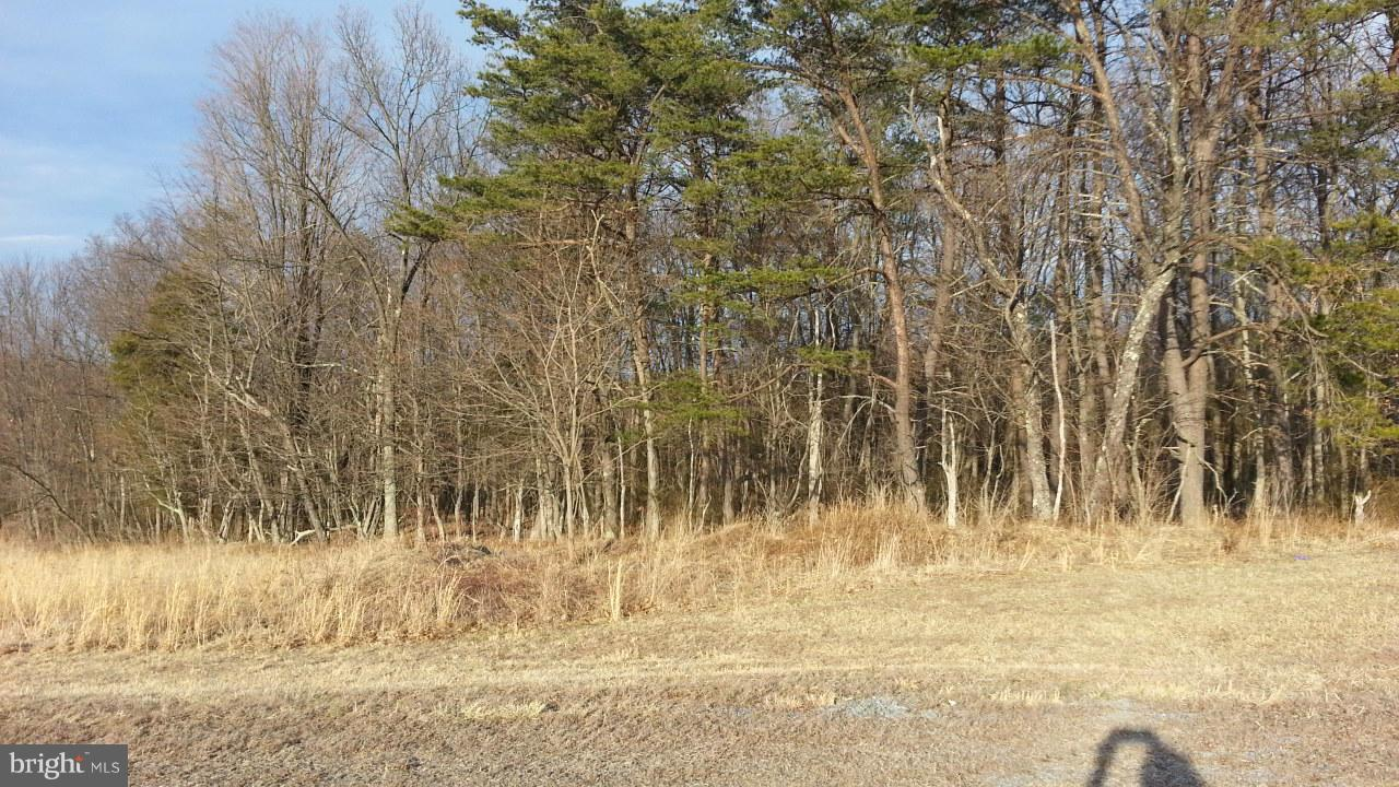 Additional photo for property listing at 12 Husk Trl  Berkeley Springs, West Virginia 25411 United States