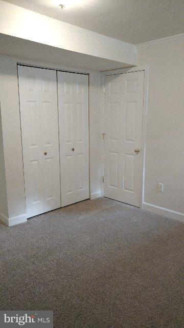 Newly Carpeted and Freshly Painted Back Room - 76 BOILEAU CT, MIDDLETOWN