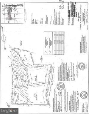 Land for Sale at Burrsville Rd Denton, Maryland 21629 United States