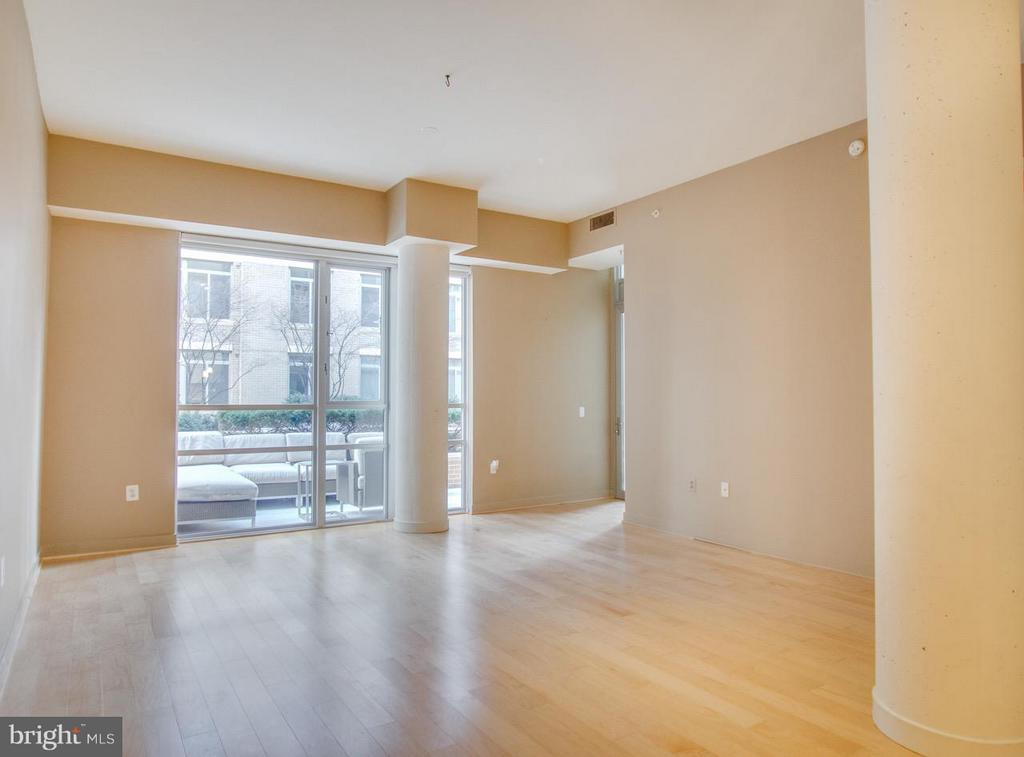 Large Contemporary Living Room - 12025 NEW DOMINION PKWY #108, RESTON
