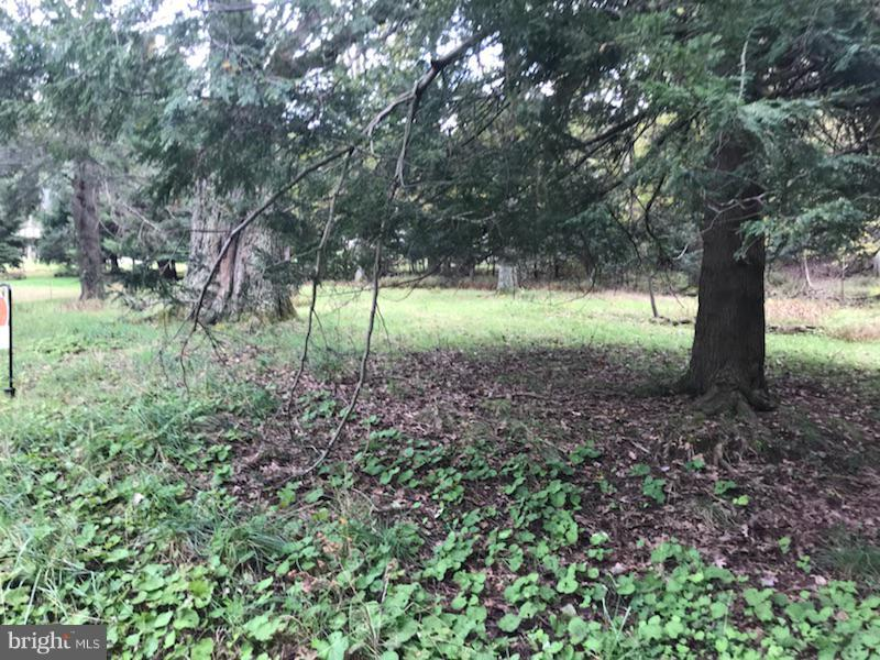 Land for Sale at Gila Trl Oakland, Maryland 21550 United States