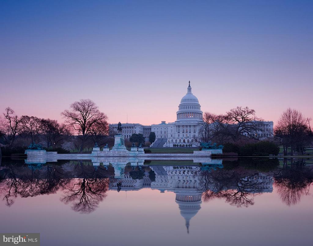 The Capitol - 9034 BRONSON DR, POTOMAC