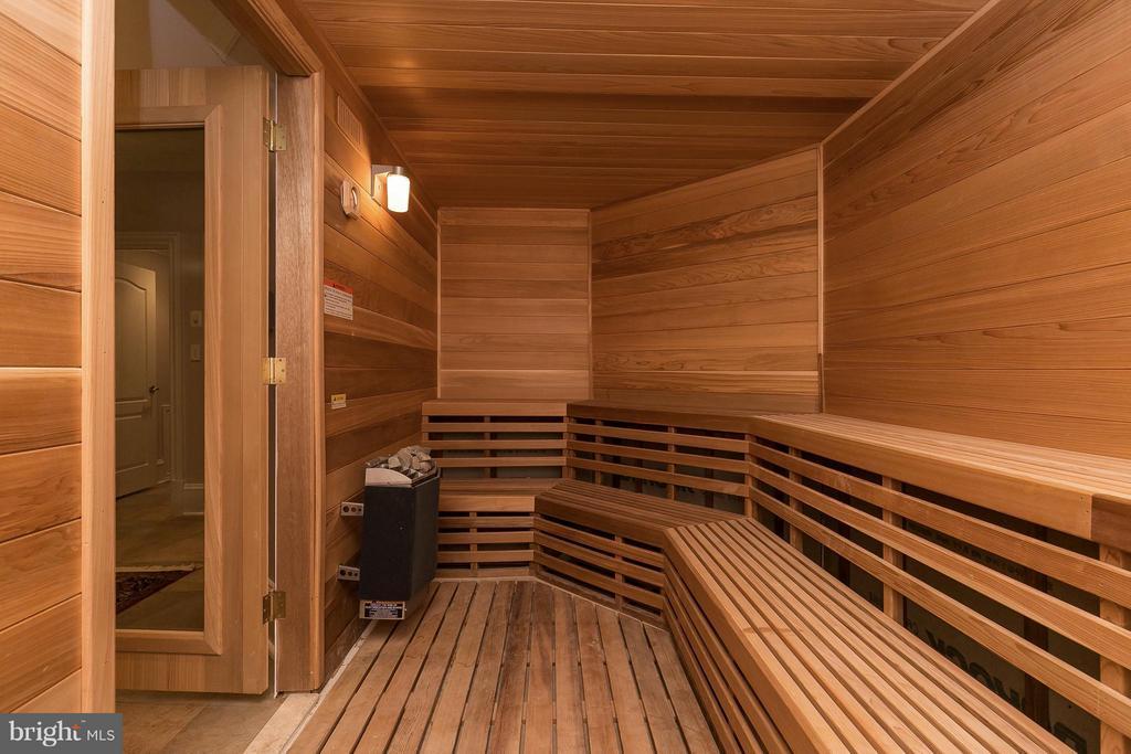 Sauna - 9034 BRONSON DR, POTOMAC