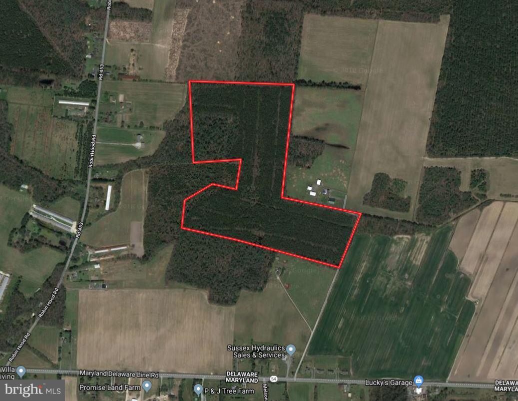 土地,用地 为 销售 在 Delmar, 特拉华州 19940 美国