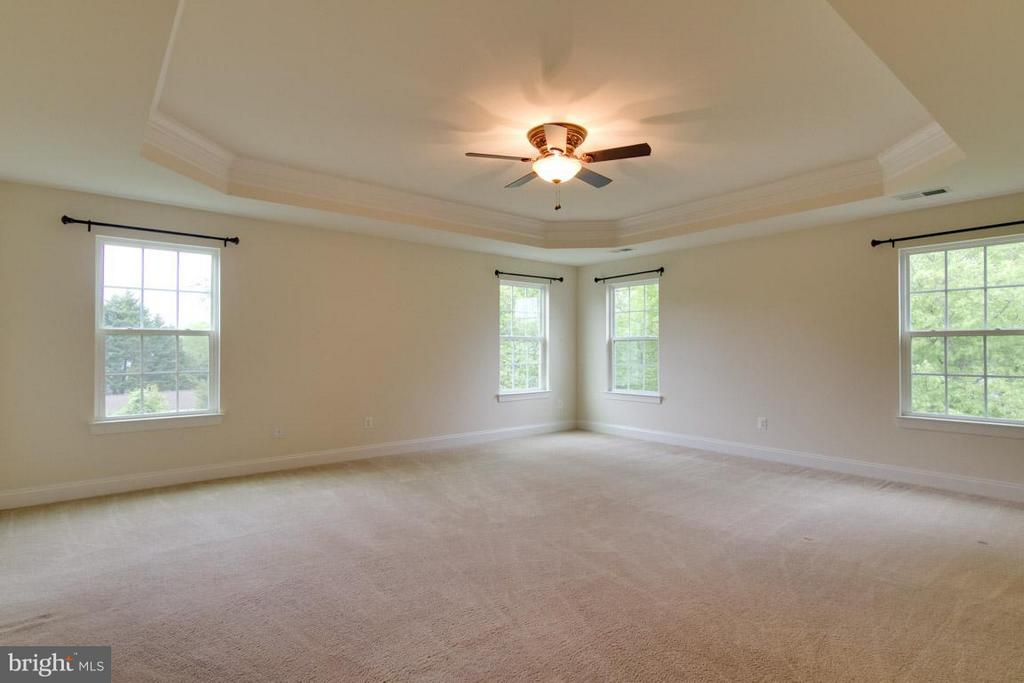 Huge Owner's Suite with Trey Ceiling - 5 KETTLEBROOK CT, STAFFORD