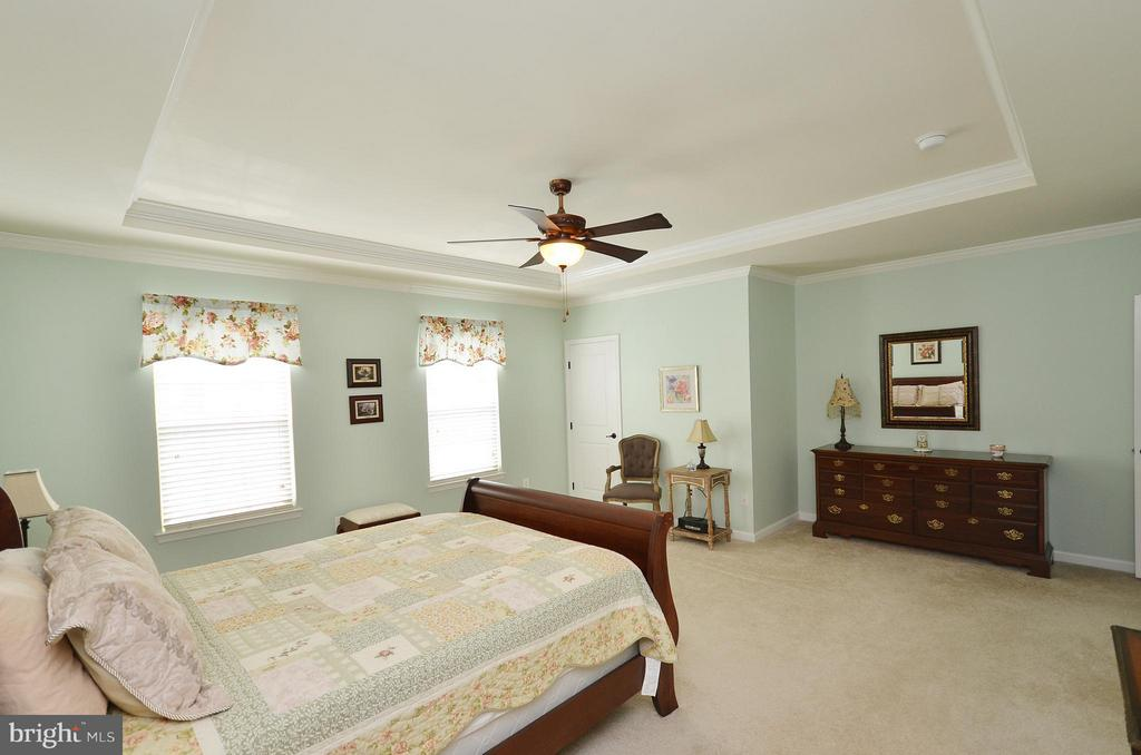 Large Master Bedroom with Walkin Closet - 21627 ROMANS DR, ASHBURN