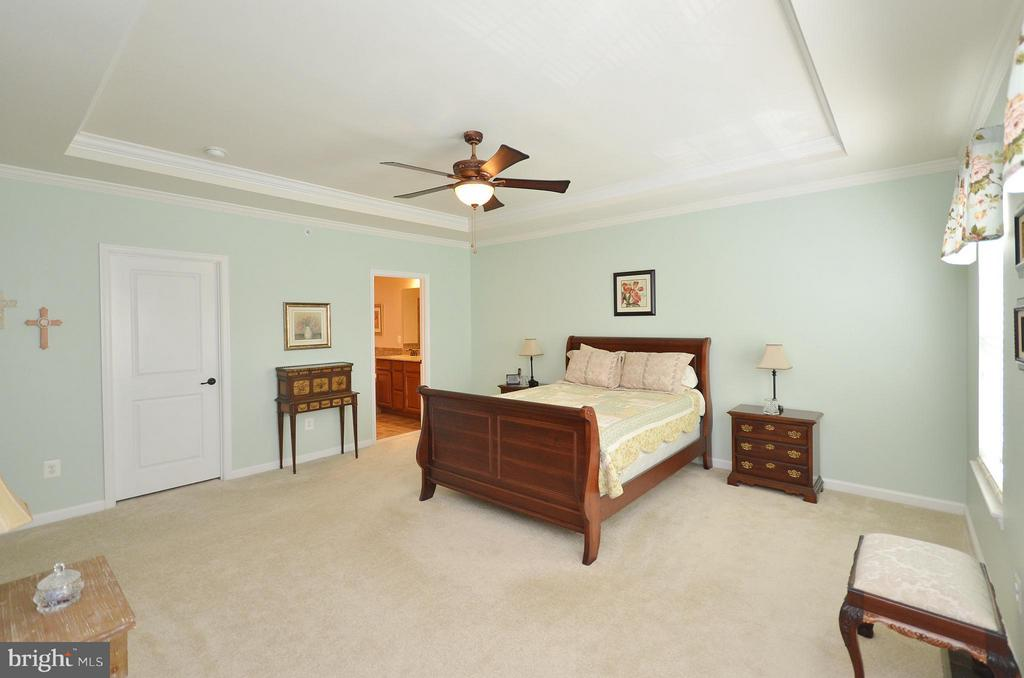Large Master Bedroom with Ceiling Fan - 21627 ROMANS DR, ASHBURN
