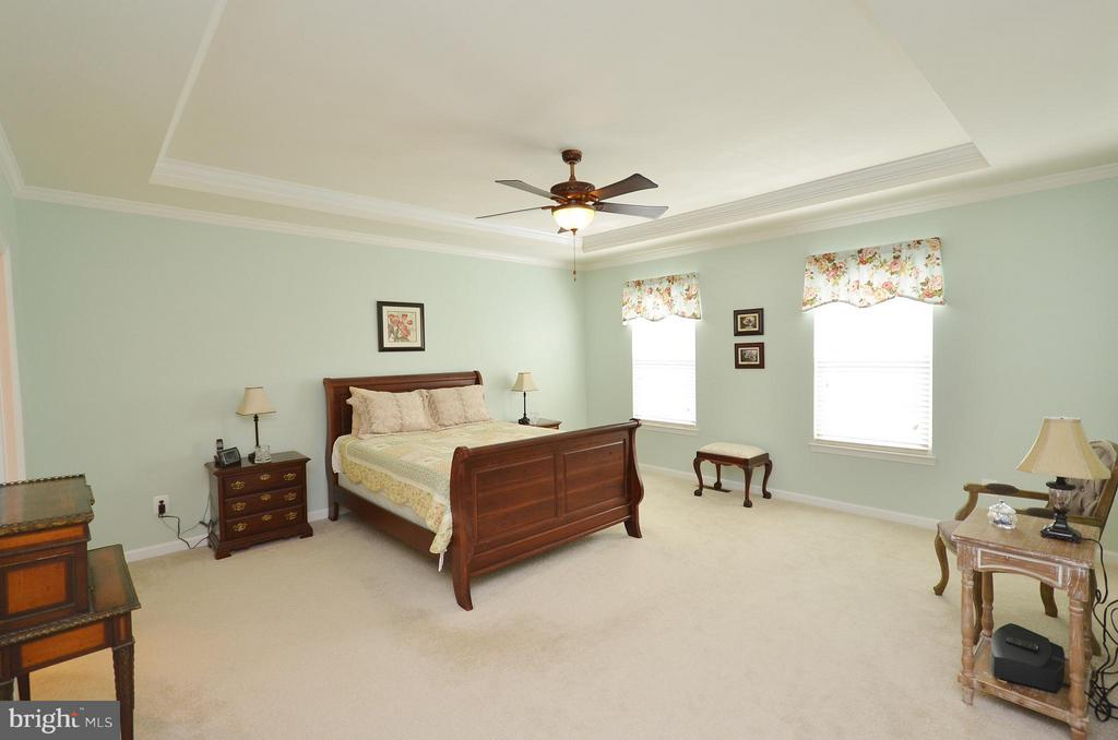 Large Master Bedroom with Tray Ceiling - 21627 ROMANS DR, ASHBURN